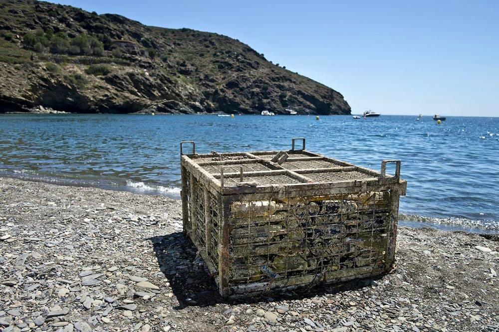 Faire vieillir du vin sous la mer, c'est possible !