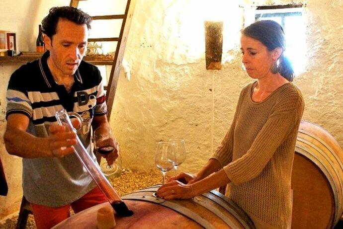 Stephane Yerle : «Le vin nature, ce n'est pas innover, C'est… une tendance vintage»