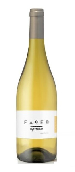 Face B - Engrenaches