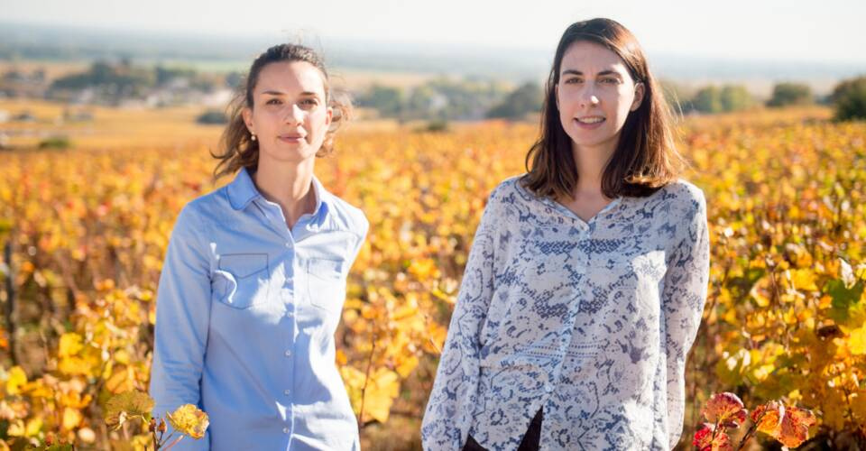 Buy from the winemaker, choose with the community