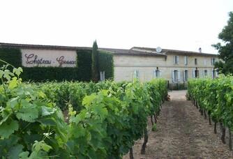 Château Gessan - Vue sur les vignes et le château