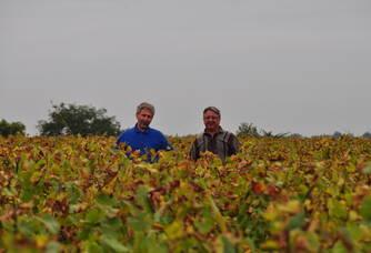 Jean-Luc et Guy Ollivier dans leur vignoble