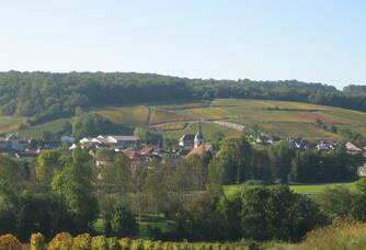 Vue depuis le champagne Boulachin Chaput