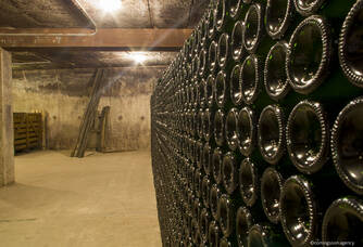 Cave du Champagne By Fernand