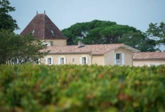 vue sur les vignes et le château Ogier de Gourgue