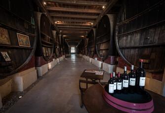 Espace de dégustation du Château de Pech-Céleyran