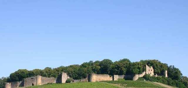 Château d'Arlay