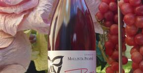 Domaine Moulin du Pourpré(Vallée du Rhône) : Visite & Dégustation Vin