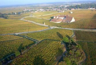Le vignoble du Domaine Labruyère Prieur Sélection