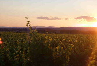 Coucher du soleil sur le domaine la Bastide