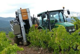 Le travail dans les vignes au Domaine Les Vingt Citadelles