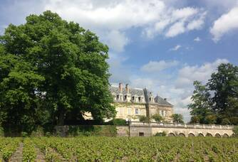 Vue sur le vignoble du Château de Nevers