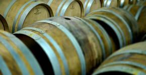 Champagne Bonnet Ponson(Champagne) : Visite & Dégustation Vin