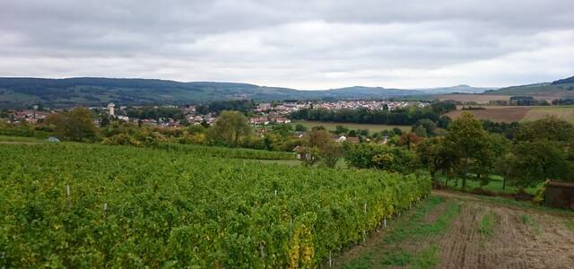 Domaine de la Vieille Côte