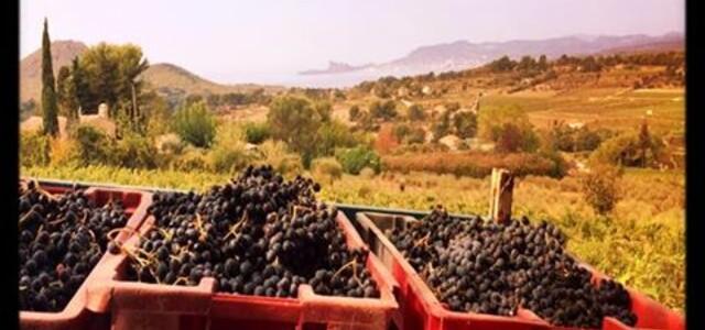 Maison Vignes & Mer