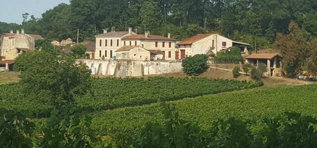 Château Tour Birol