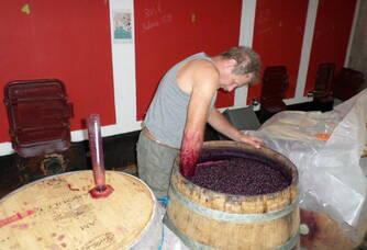 1903 L'excellence, vinification intégrale en barrique
