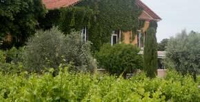 Domaine Grand Père Jules(Vallée du Rhône) : Visite & Dégustation Vin