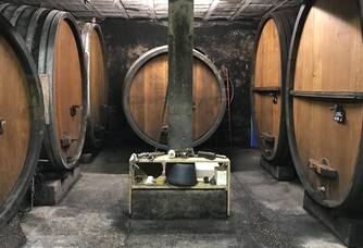 Cave vinification