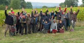Domaine Lambert(Loire) : Visite & Dégustation Vin