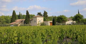 DOMAINE DE MAS CARON(Vallée du Rhône) : Visite & Dégustation Vin