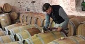 Château Les Maubats(Bordeaux) : Visite & Dégustation Vin