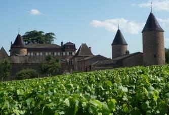 vignes et château aux trois tours médiévales