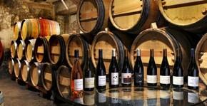 la gamme des vins du domaine présentée dans la cave de dégustation