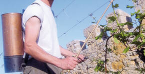 Domaine Jean-Baptiste Adam(Alsace) : Visite & Dégustation Vin