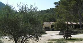 Domaine de Cassan(Vallée du Rhône) : Visite & Dégustation Vin