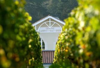 Château Larrivet Haut-Brion - Le Château depuis les vignes