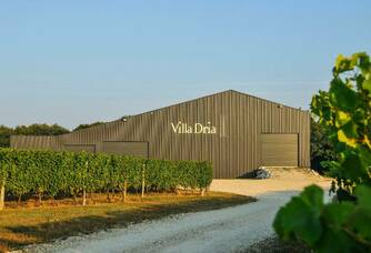 Villa Dria - La cave éco-conçue