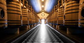 Château Pape Clément(Bordeaux) : Visite & Dégustation Vin