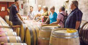 Domaine Vayssette - Visite des chais et explication par le vigneron