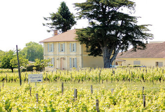 Château Peyruchet - Le vignoble et le château