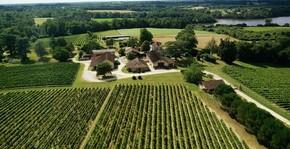 Château Garreau - Le vignoble du domaine