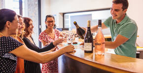Maison Labastide(Sud-Ouest) : Visite & Dégustation Vin