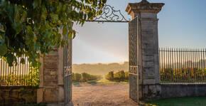 Château de Reignac - La grille