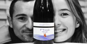 Domaine Menard Gaborit(Loire) : Visite & Dégustation Vin