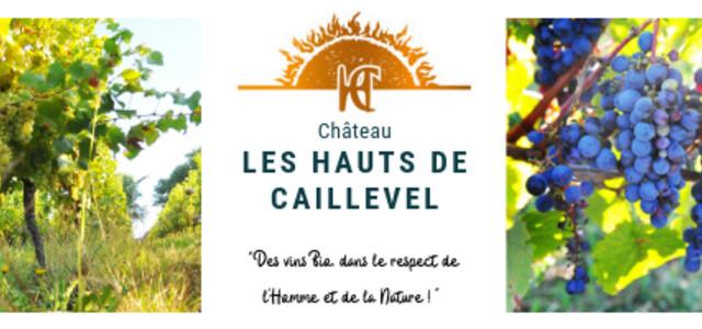 Château Les Hauts de Caillevel