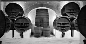 Domaine de Soustres(Languedoc) : Visite & Dégustation Vin