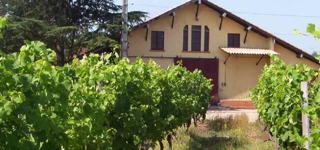 Château Laurou