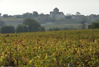 Une vue du Château Haut-Goujon surplombant le vignoble