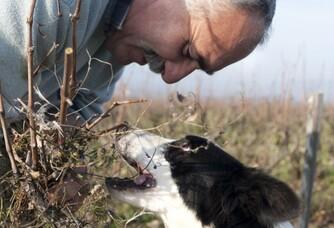 Marcel et son chien du domaine La Bonne Tonne