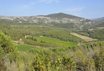 Vue panoramique du Domaine Mandourelle
