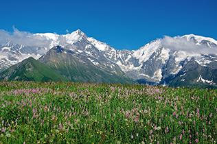 Région de la Savoie et des Hautes-Alpes